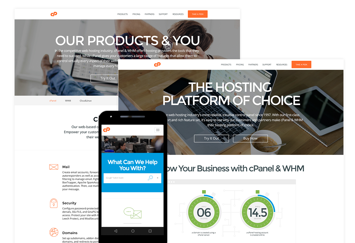 cPanel Website